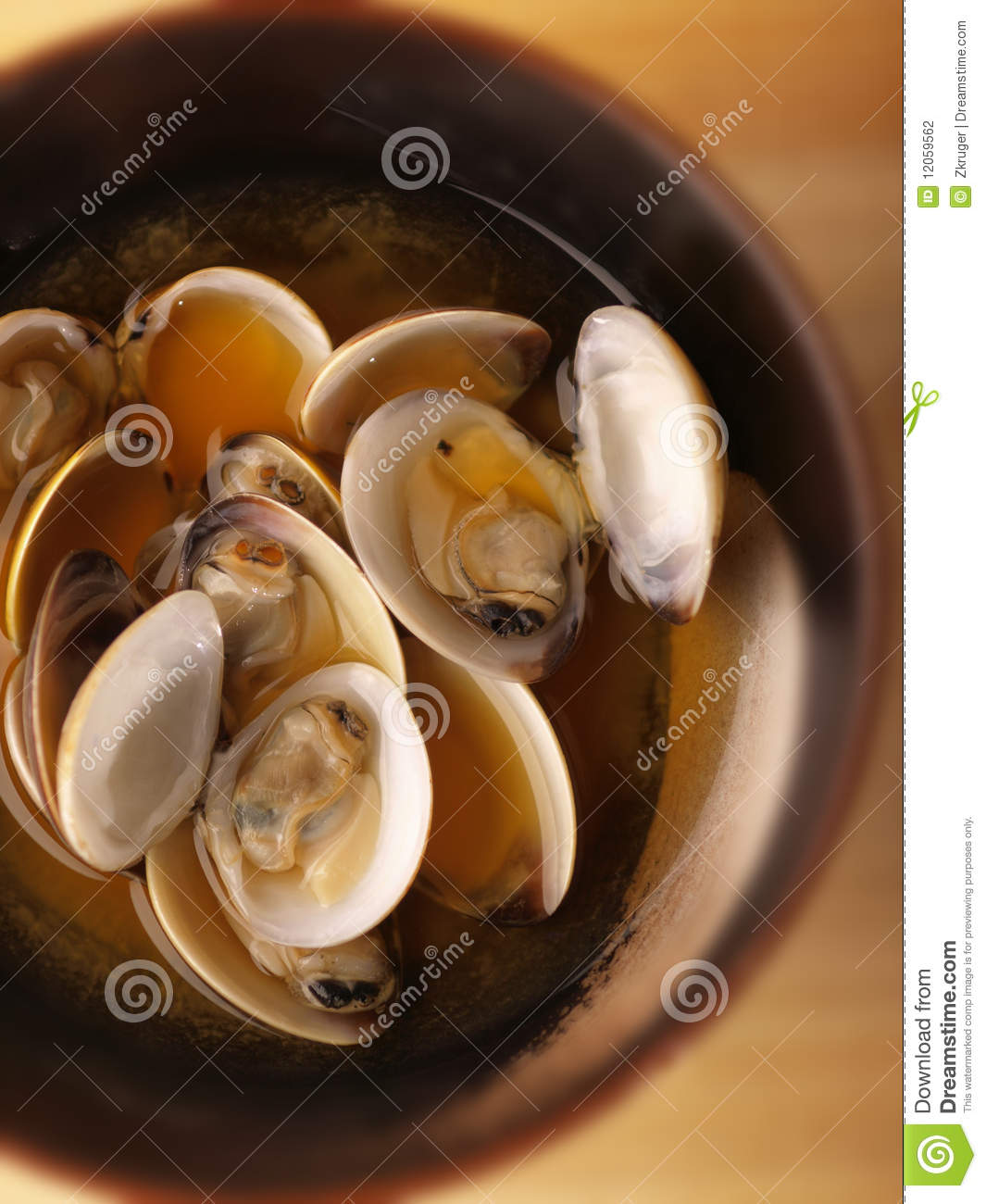 What do asian clams eat