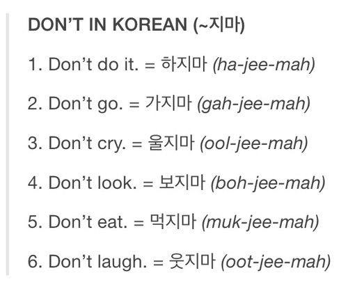 language this What is in korean